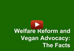 Farm Sanctuary video