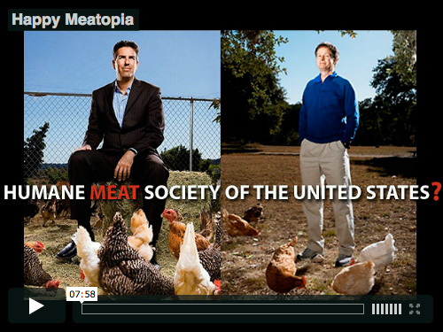 Happy Meatopia Video
